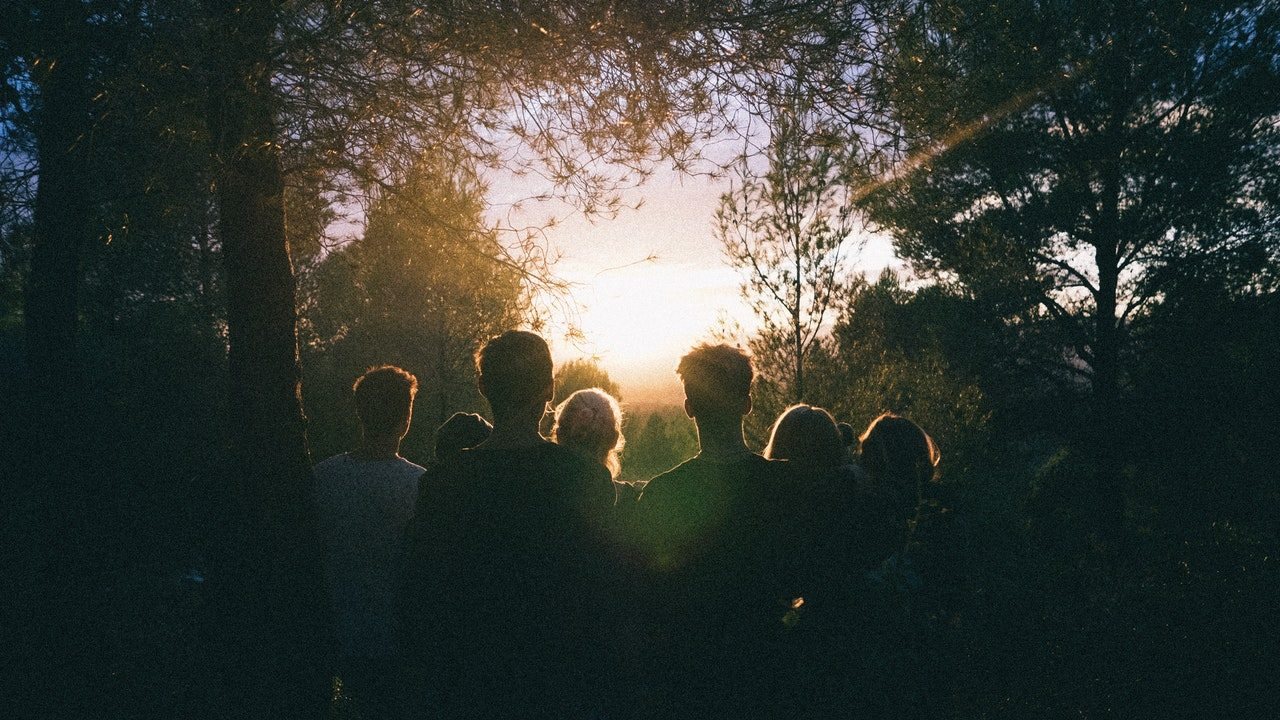 Silhouette of Group of People Between Tree Line