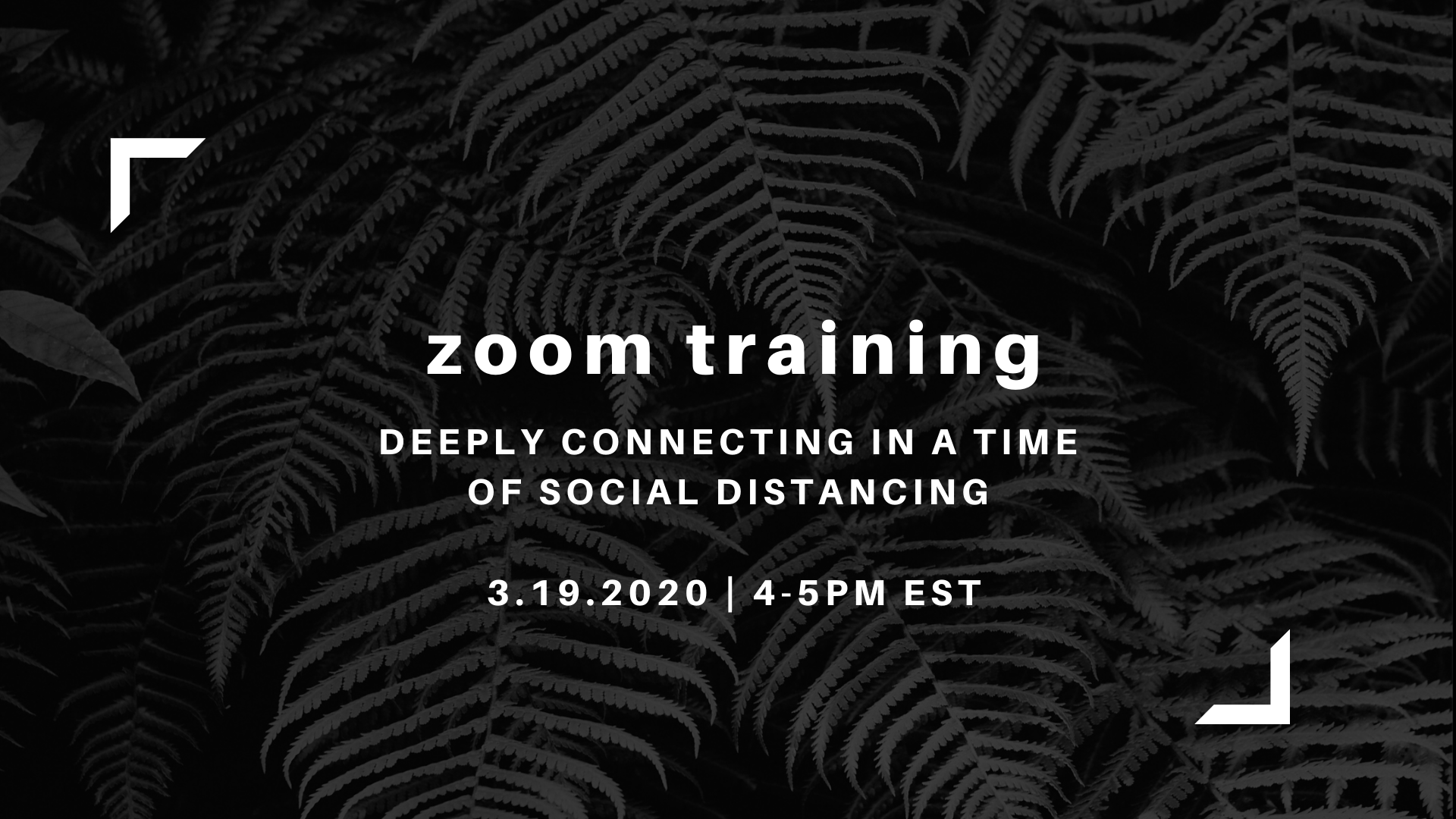 Zoom Training: Deeply connecting in a time of social distancing
